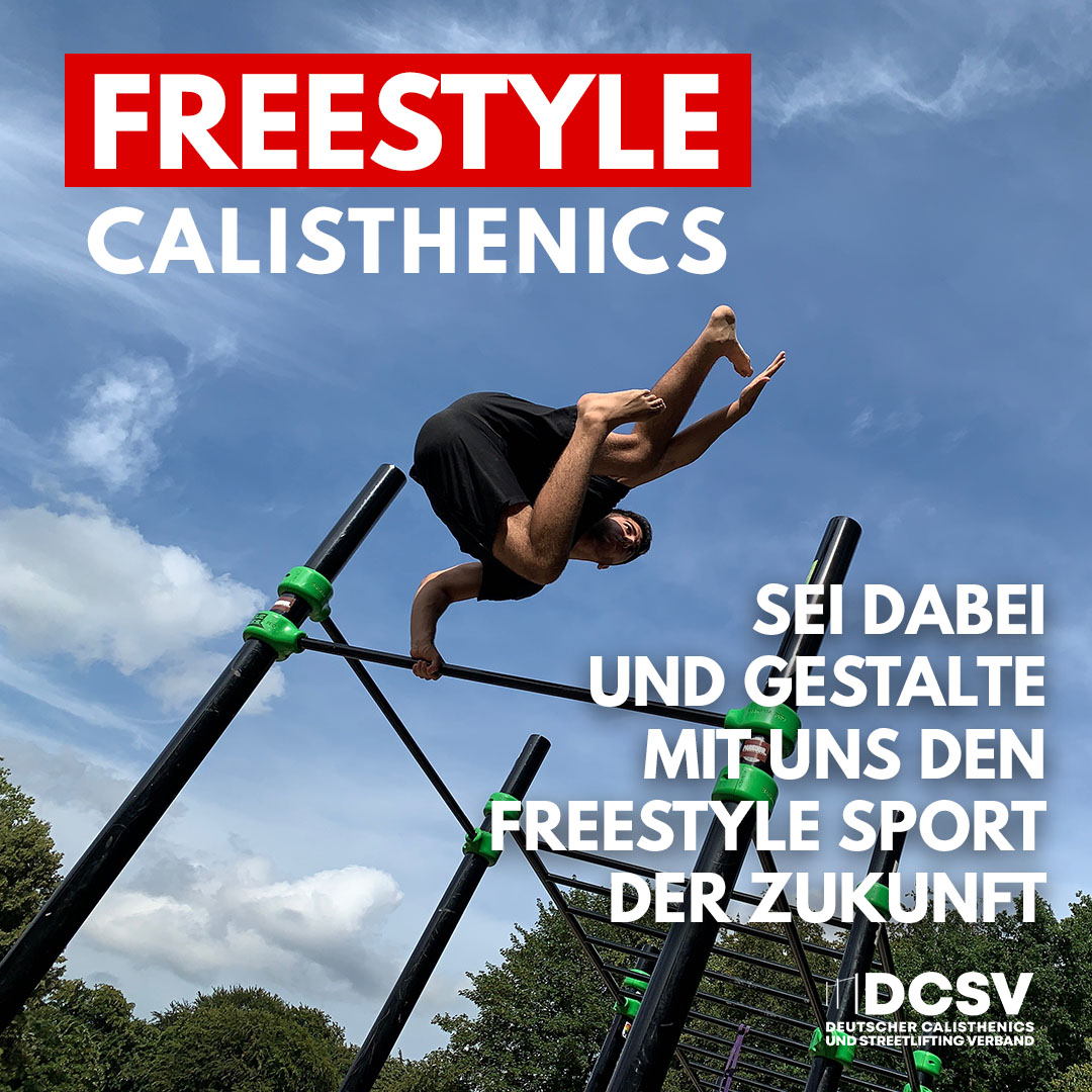 Read more about the article Start der ersten Arbeitsgruppe Freestyle Calisthenics