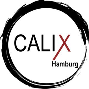 Calisthenics Hamburg