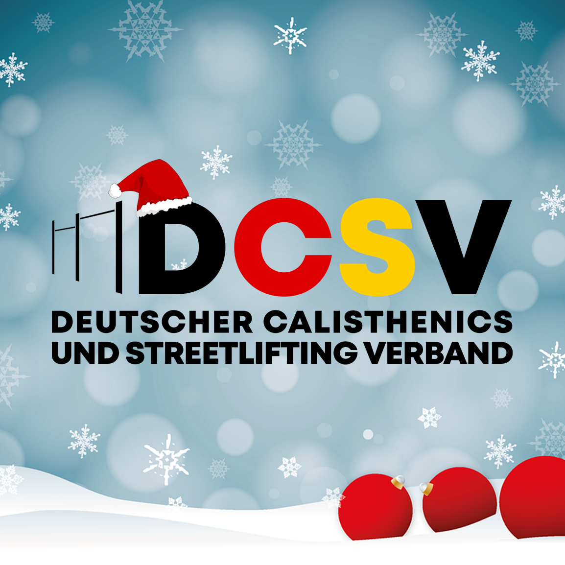 Frohe Weihnachten wünscht das gesamte DCSV Team